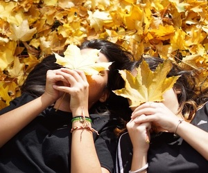 autumn, tumblr, and best friend image