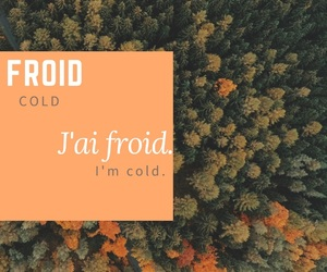 cold, english, and francais image