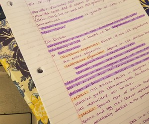 biology, college, and notes image
