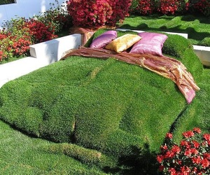 bed, green, and grass image