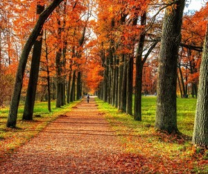 autumn and russia image