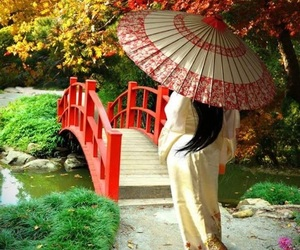 geisha, autumn, and japan image