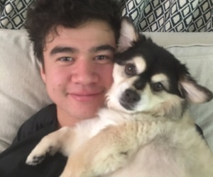 calum hood, calum, and 5sos image