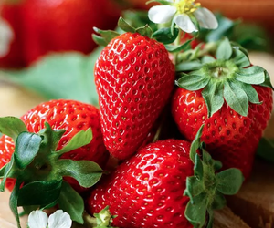 fruit, FRUiTS, and strawberries image