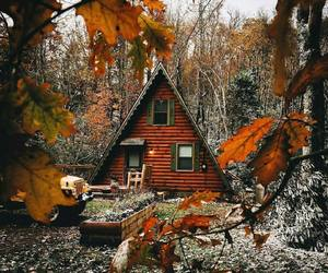 autumn, aesthetic, and cabin image