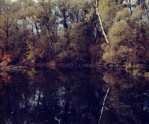 beautiful, lake, and fishing image