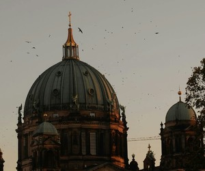 berlin, birds, and building image