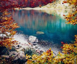 nature, lake, and autumn image