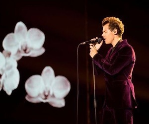 Harry Styles, flowers, and sign of the times image