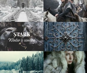 aesthetic, photography, and stark image