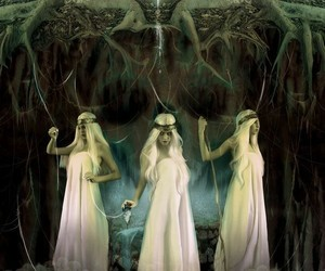 norse mythology, yggdrasil, and the norns image