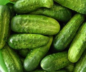 crisp, cucumber, and fresh image
