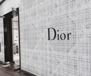 fashion, dior, and chic image