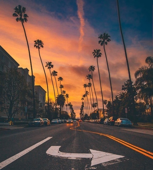 travel and sunset image