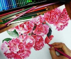 drawing, flowers, and pink image
