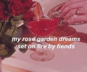 aesthetic, cherry, and rose image