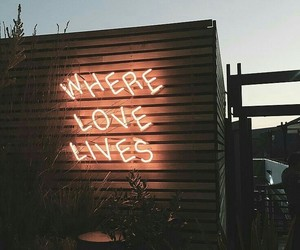 love, neon, and light image
