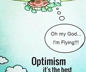 quotes, turtle, and optimism image