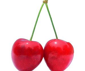 cherry and png image