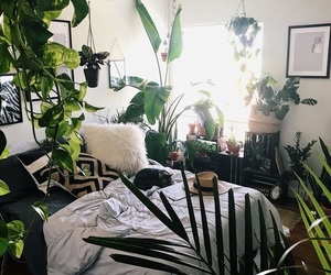 bedroom, bright, and environment image