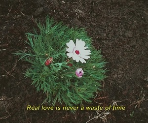 90s, aesthetics, and flowers image