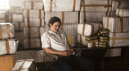 drugs, pablo, and escobar image