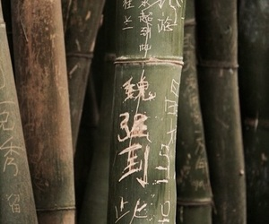 theme, green, and bamboo image