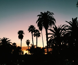 california, palmtrees, and sunset image