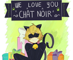 Chat Noir and miraculous ladybug image