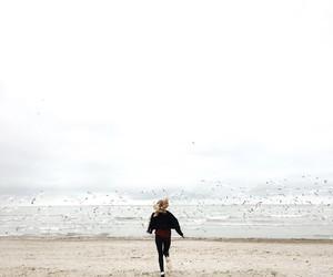 beach, nature, and run image