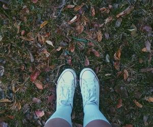 autumn, converse, and warm image