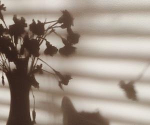 Image by frida