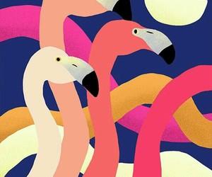 animal, blue, and pink flamingos image