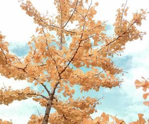 autumn, faded, and fall image