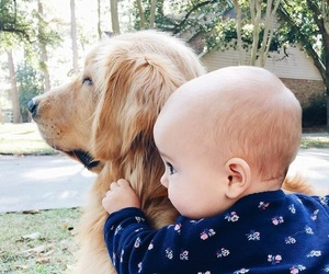 baby, dog, and little image