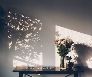 shadow, flowers, and home image