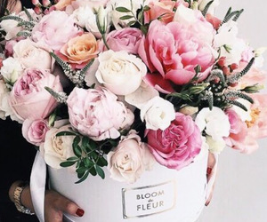 fleur, flowers, and Fleurs image