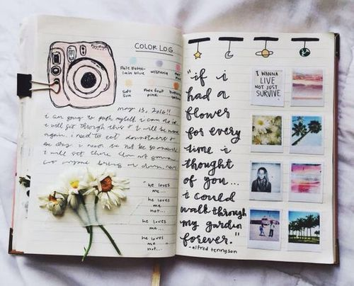 journal, book, and flowers image