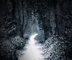 These woods are lovely, dark and deep, But I have promises to keep, And miles to go before I sleep, And miles to go before I sleep. Robert Frost