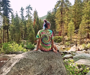 nature, tiedye, and sequoia image