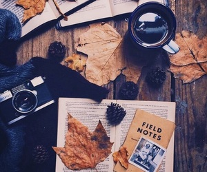 autumn, book, and camera image