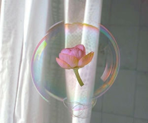 flowers, bubbles, and pink image