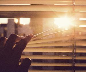 sun, window, and hand image