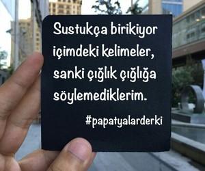 alıntı, türkçe sözler, and papatyalarderki image