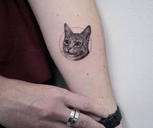 animal, body art, and cat image