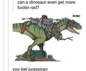 funny, dinosaur, and humor image