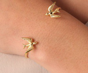 beautiful, birds, and necklaces image