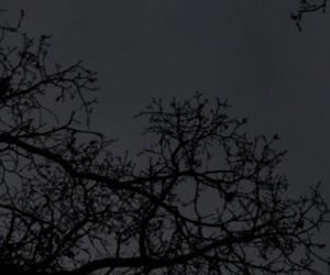 aesthetic, background, and Halloween image