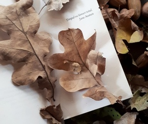autumn, time, and book image