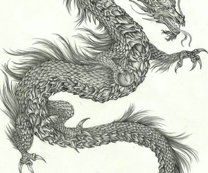 awesome, dragon, and drawing image